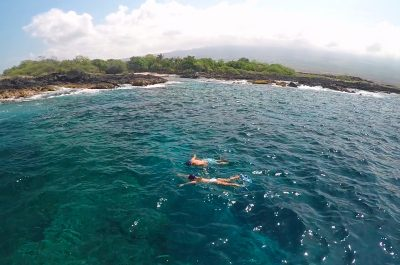 Kailua Kona Snorkeling